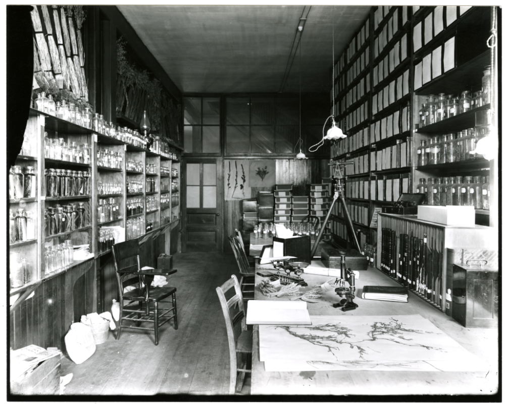 laboratory and seed room of agriculturalist Willet Hays