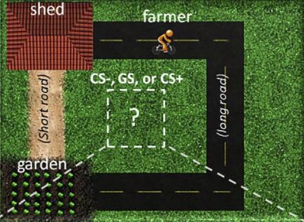 Screenshot from farming game