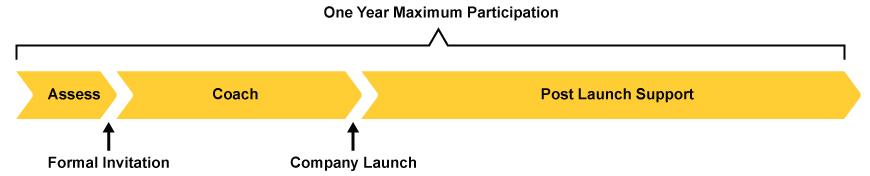 "Three phases within a one year maximum participation timeline. Phases are: asses, coach, and post launch support. A formal invitation follows the ""asses"" phase. ""Company launch"" follows the ""coach"" phase."