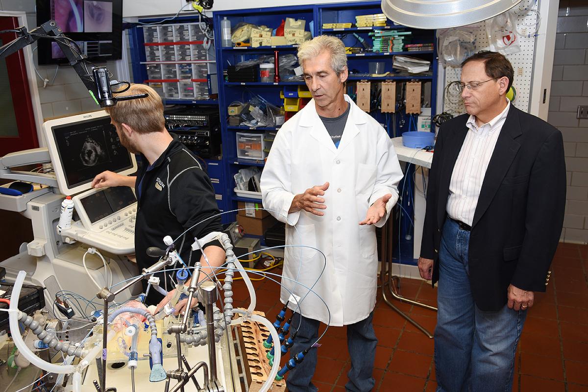 Paul Iaizzo & Brian Herman watch Alex Mattson produces a sonogram