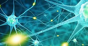 illustration of neural networks