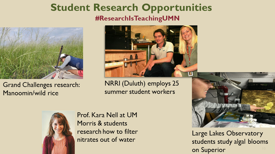Student research opportunities: wild rice harvesting in Manoomin; student workers at NRRI and note about 25 summer student workers; portrait of Prof. Kara Nell at UMN Morris who filters nitrates from water; student studying algal bloom at large lakes obsv