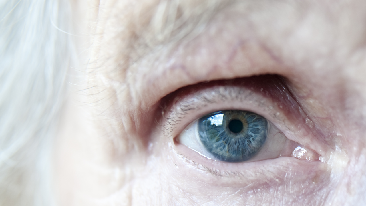 An elderly woman's blue eye