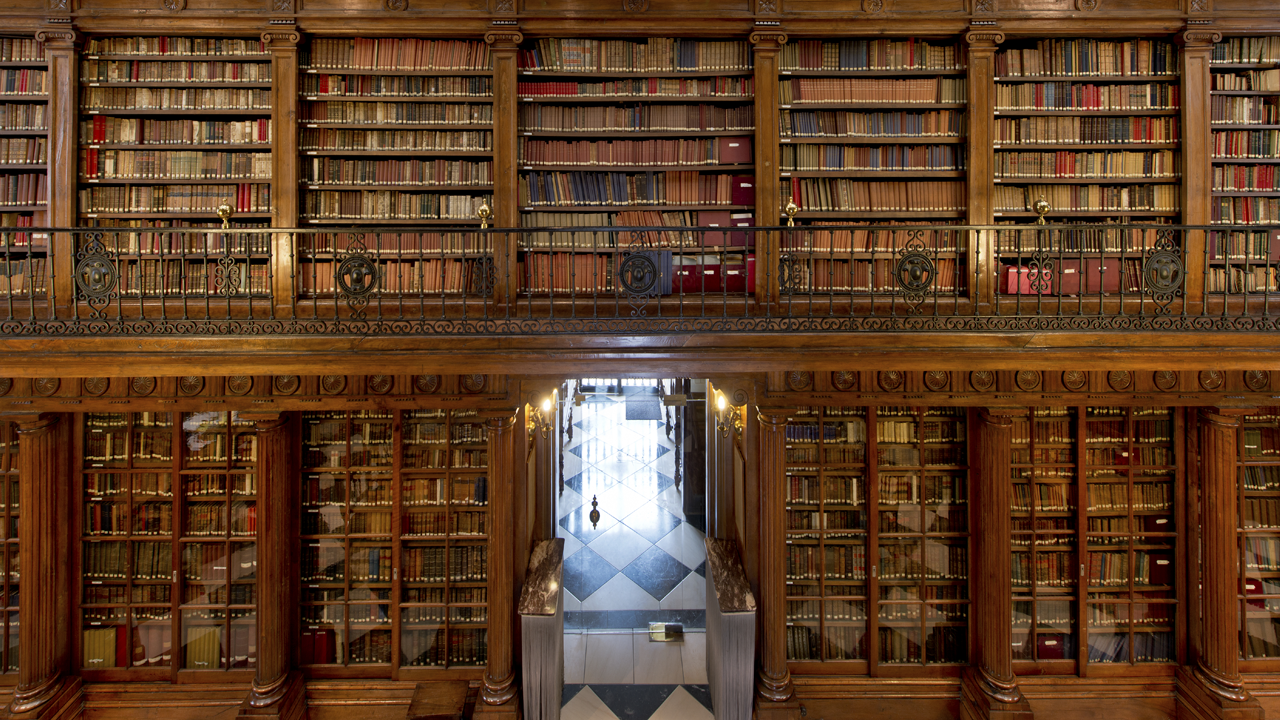 View of old library shelves