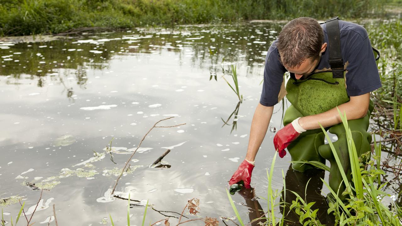 Man sampling water from pond