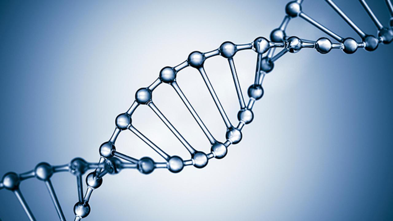 DNA rendering