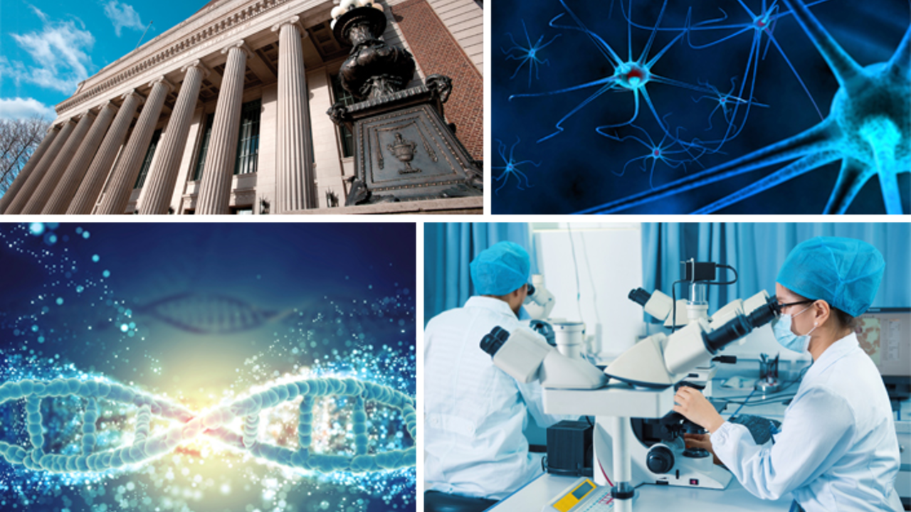 Research and Academia Collage
