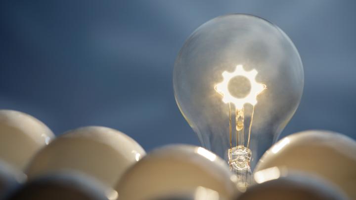 One lit lightbulb among several unlit bulbs