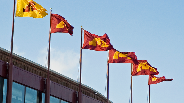 University of Minnesota flags