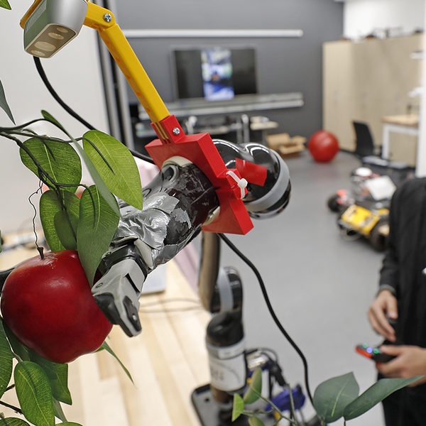 Robotic arm picking an apple