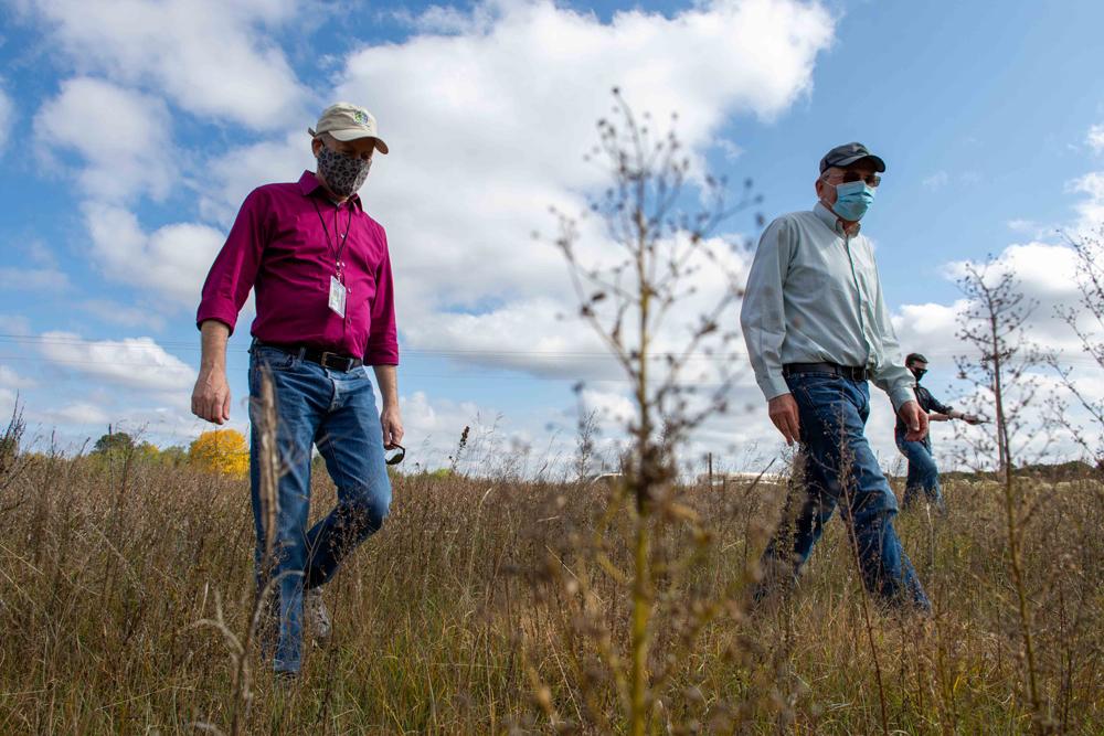Three people walk through a dense natural prairie