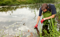 Man sampling water from pond